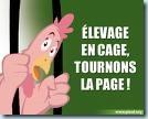 elevage_indus